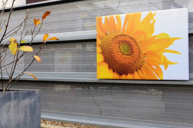 Tuinposter op 4cm frame 30x30 cm